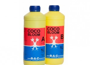 Coco Bloom A+B BAC 1л